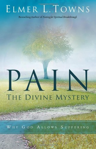 Pain The Divine Mystery Why God Allows Suffering