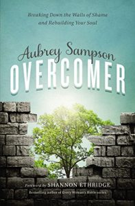 Overcomer: Breaking Down the Walls of Shame and Rebuilding Your Soul
